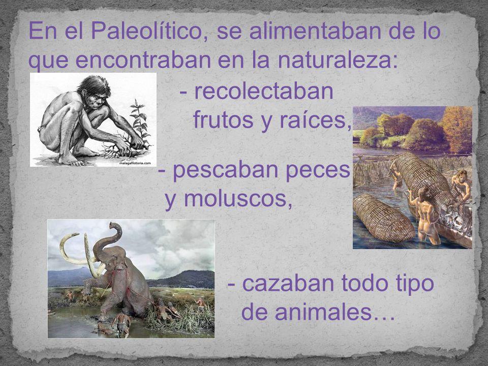 En el Paleolítico, se alimentaban de lo que encontraban en la naturaleza: