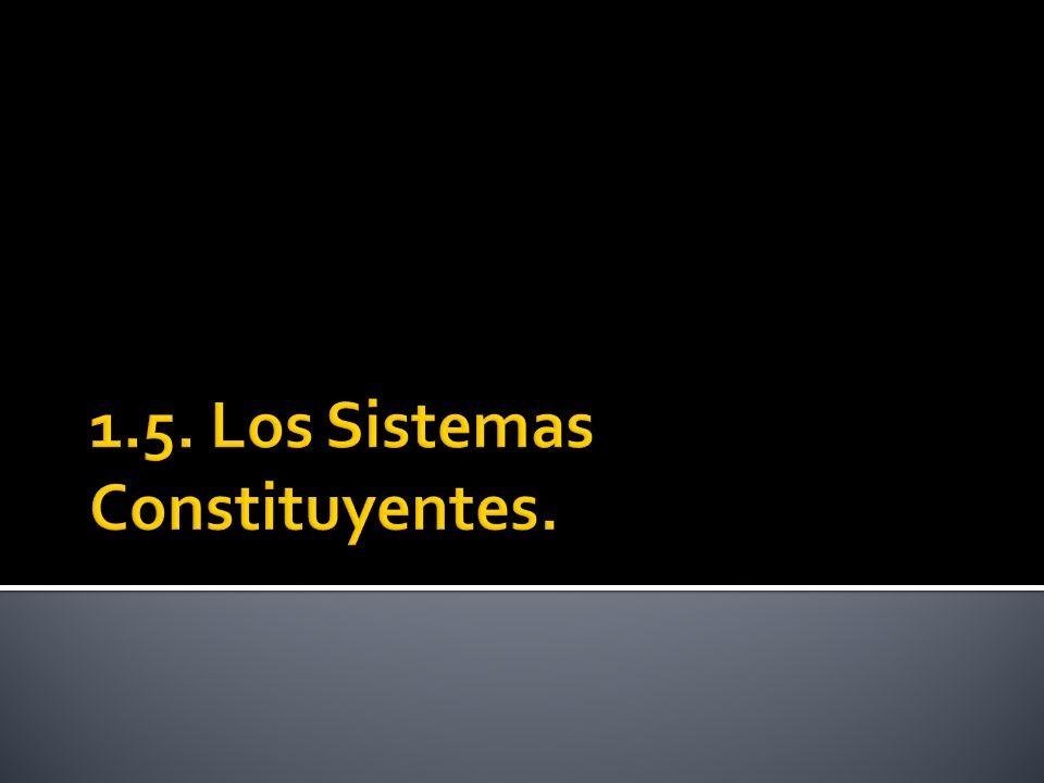 1.5. Los Sistemas Constituyentes.
