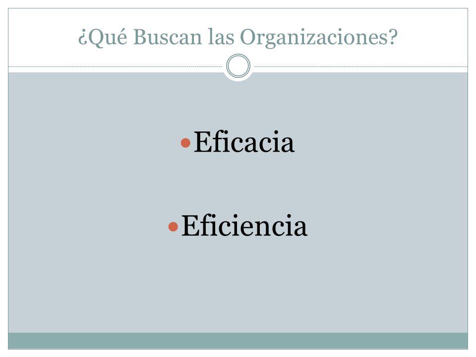¿Qué Buscan las Organizaciones
