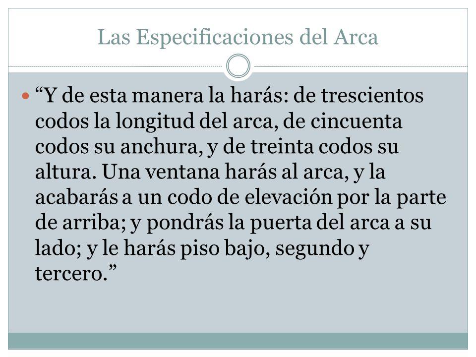 Las Especificaciones del Arca