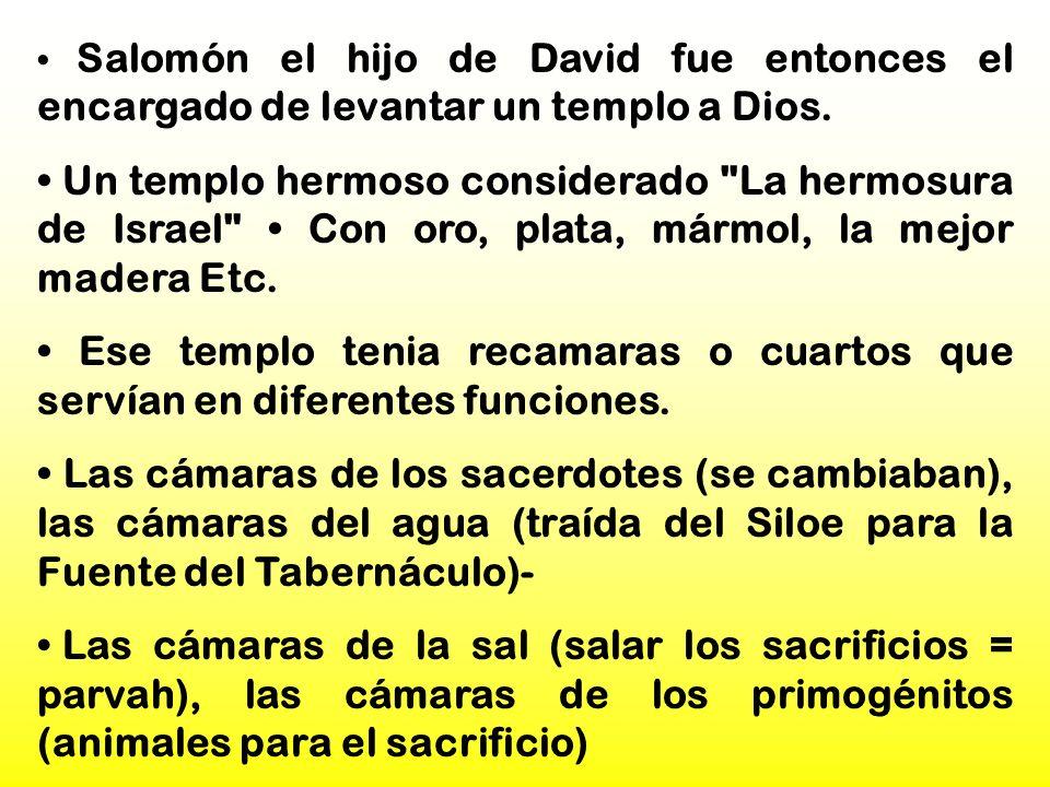 • Salomón el hijo de David fue entonces el encargado de levantar un templo a Dios.
