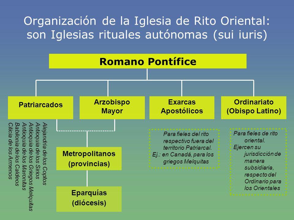 Organización de la Iglesia de Rito Oriental: son Iglesias rituales autónomas (sui iuris)