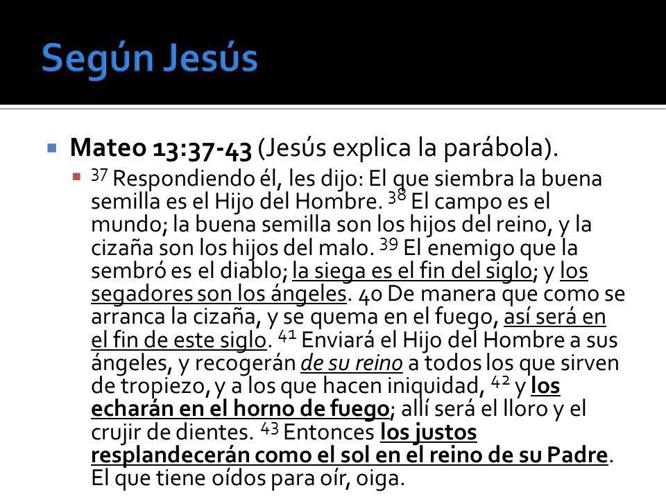 Según Jesús Mateo 13:37-43 (Jesús explica la parábola).