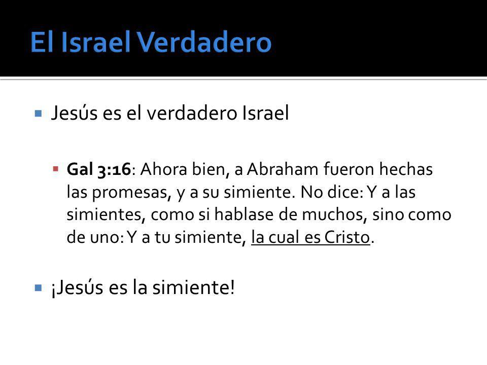 El Israel Verdadero Jesús es el verdadero Israel