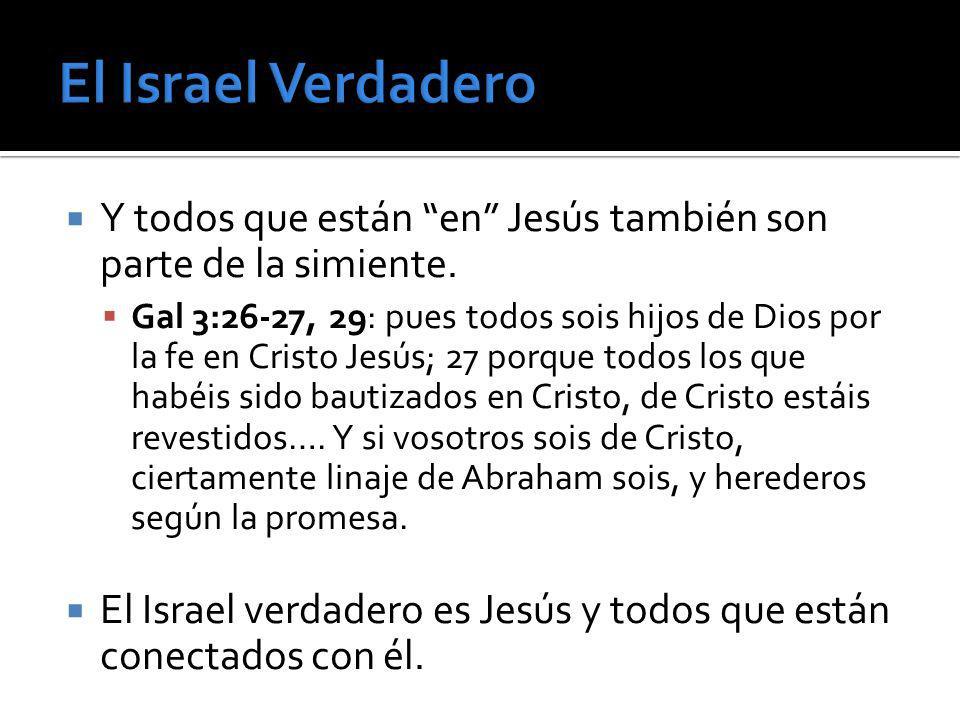 El Israel Verdadero Y todos que están en Jesús también son parte de la simiente.
