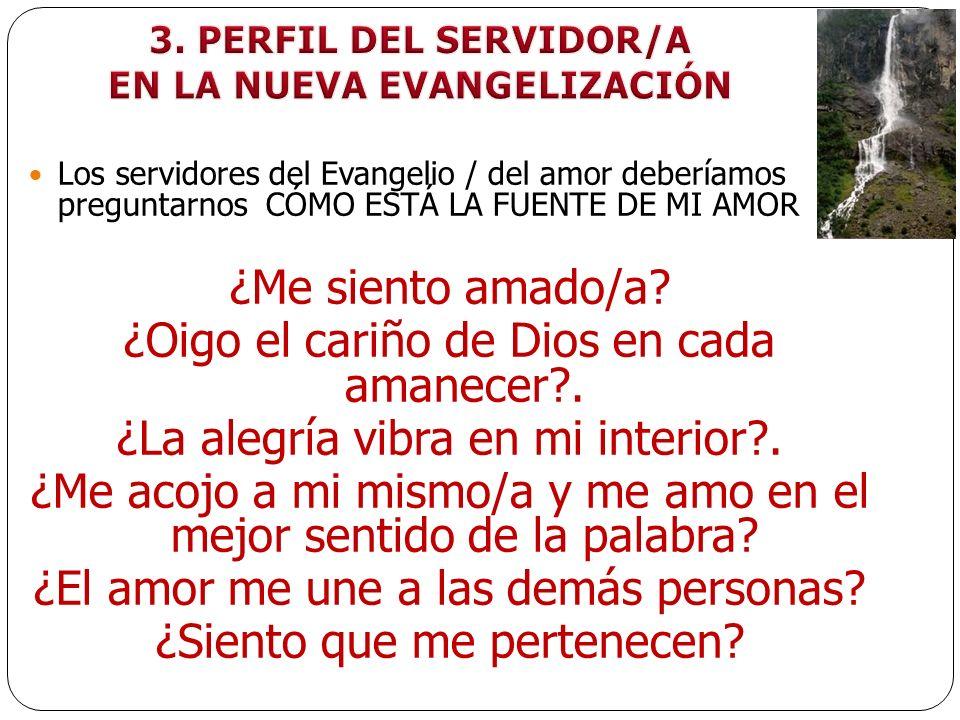 EN LA NUEVA EVANGELIZACIÓN