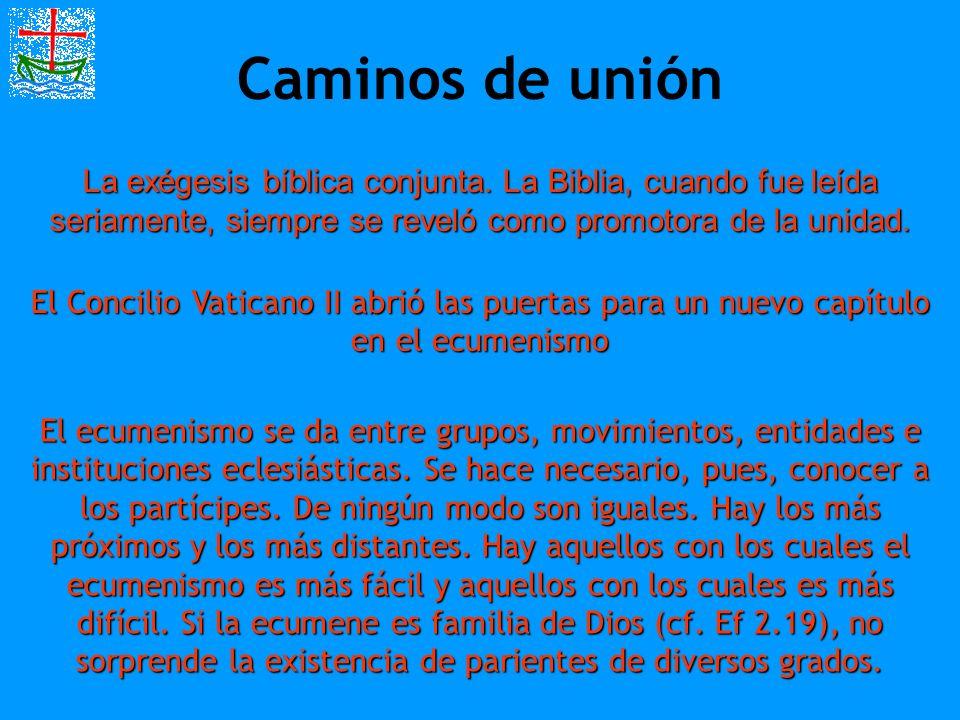 Caminos de unión La exégesis bíblica conjunta. La Biblia, cuando fue leída seriamente, siempre se reveló como promotora de la unidad.