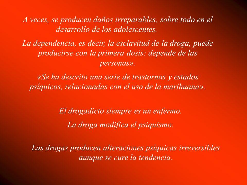 El drogadicto siempre es un enfermo. La droga modifica el psiquismo.
