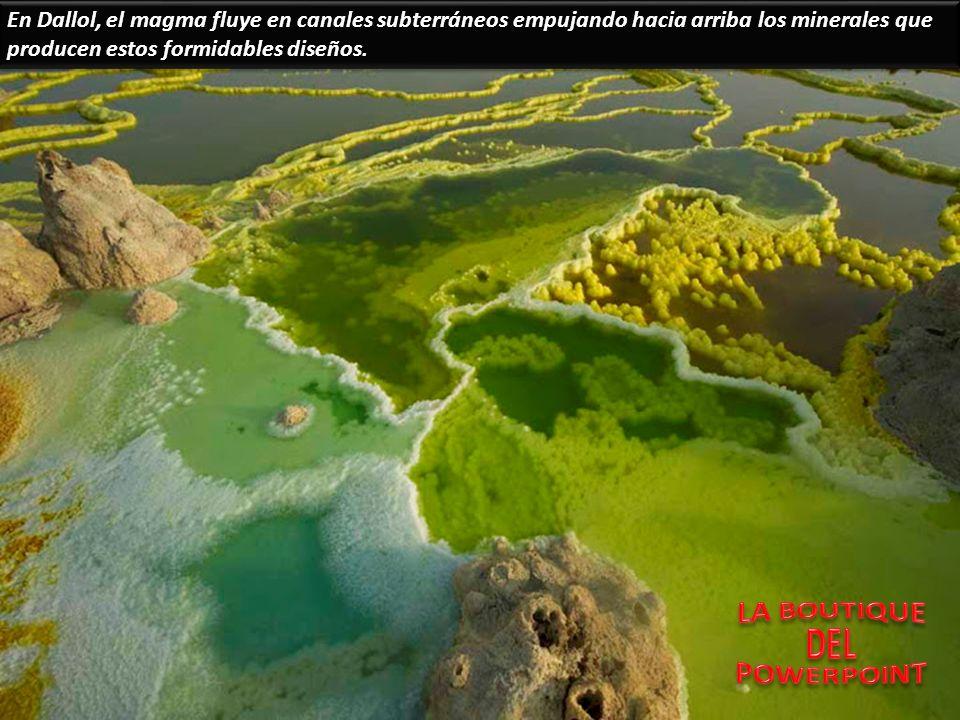 En Dallol, el magma fluye en canales subterráneos empujando hacia arriba los minerales que producen estos formidables diseños.