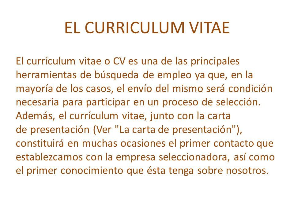 el curriculum vitae  cv