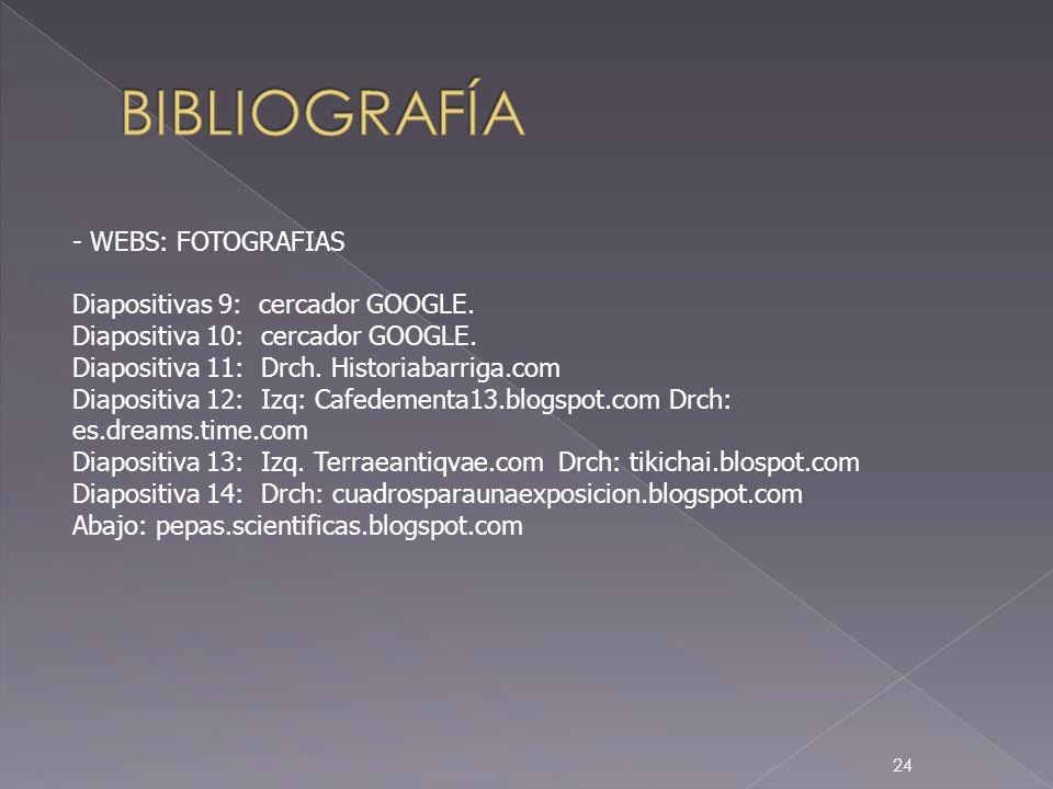 BIBLIOGRAFÍA - WEBS: FOTOGRAFIAS Diapositivas 9: cercador GOOGLE.