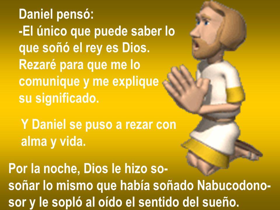 Daniel pensó: -El único que puede saber lo. que soñó el rey es Dios. Rezaré para que me lo. comunique y me explique.