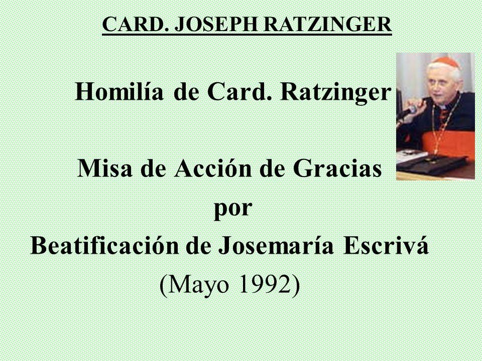 Homilía de Card. Ratzinger Misa de Acción de Gracias por