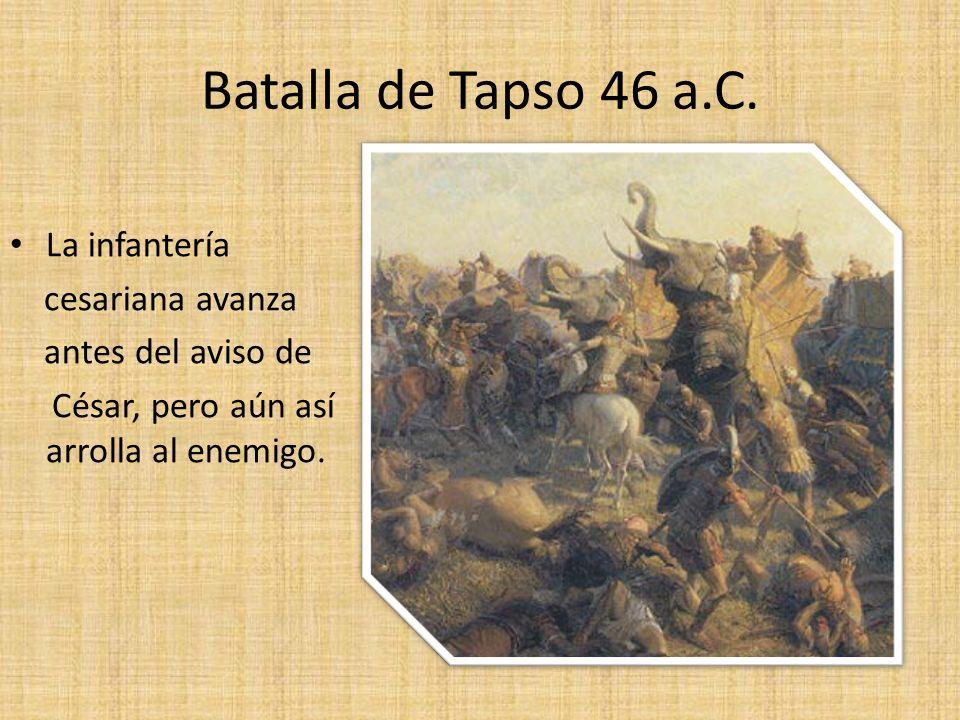 Batalla de Tapso 46 a.C. La infantería cesariana avanza