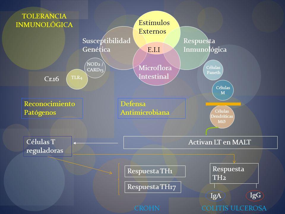 TOLERANCIA INMUNOLÓGICA Estímulos Externos Susceptibilidad Genética
