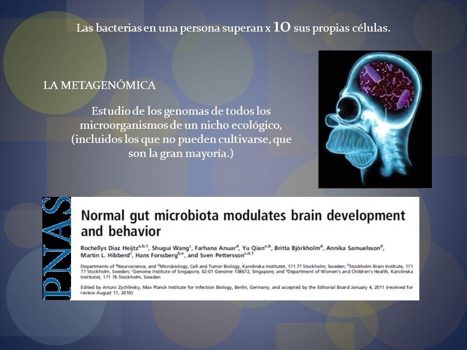 Las bacterias en una persona superan x 10 sus propias células.