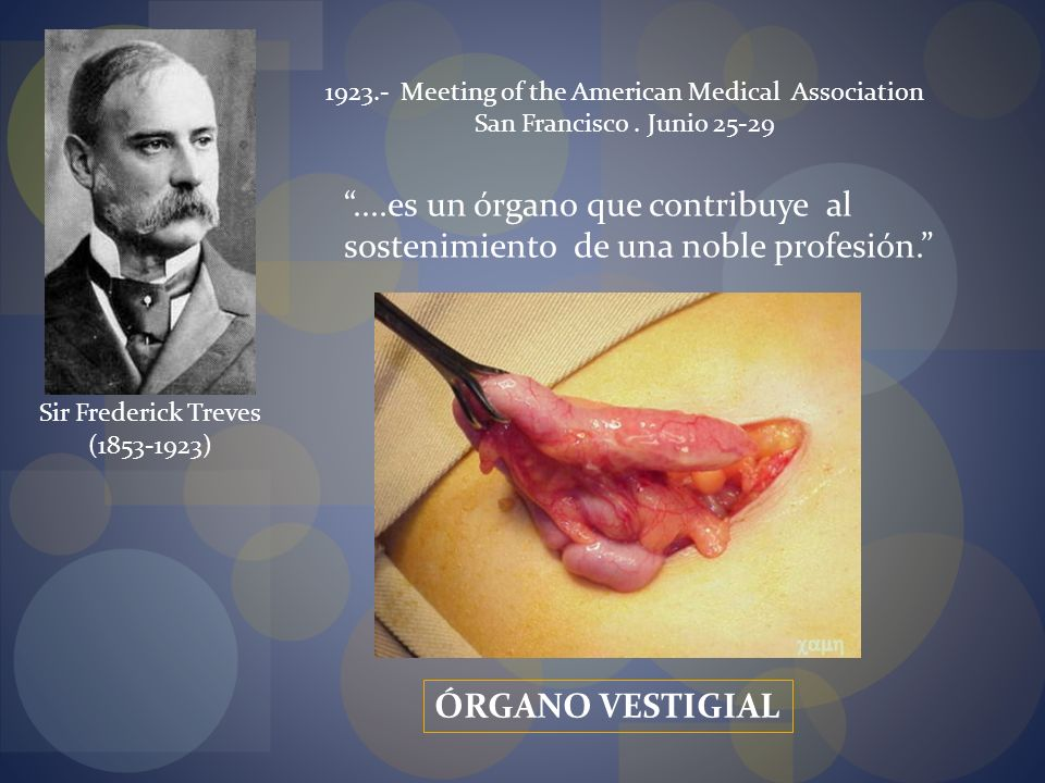 1923.- Meeting of the American Medical Association