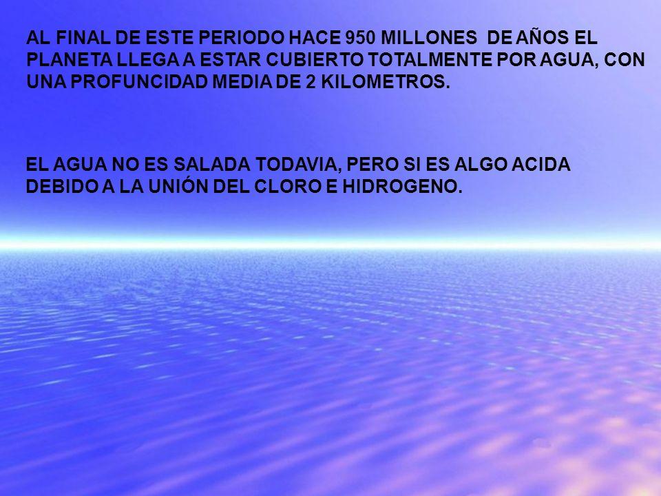 AL FINAL DE ESTE PERIODO HACE 950 MILLONES DE AÑOS EL PLANETA LLEGA A ESTAR CUBIERTO TOTALMENTE POR AGUA, CON UNA PROFUNCIDAD MEDIA DE 2 KILOMETROS.