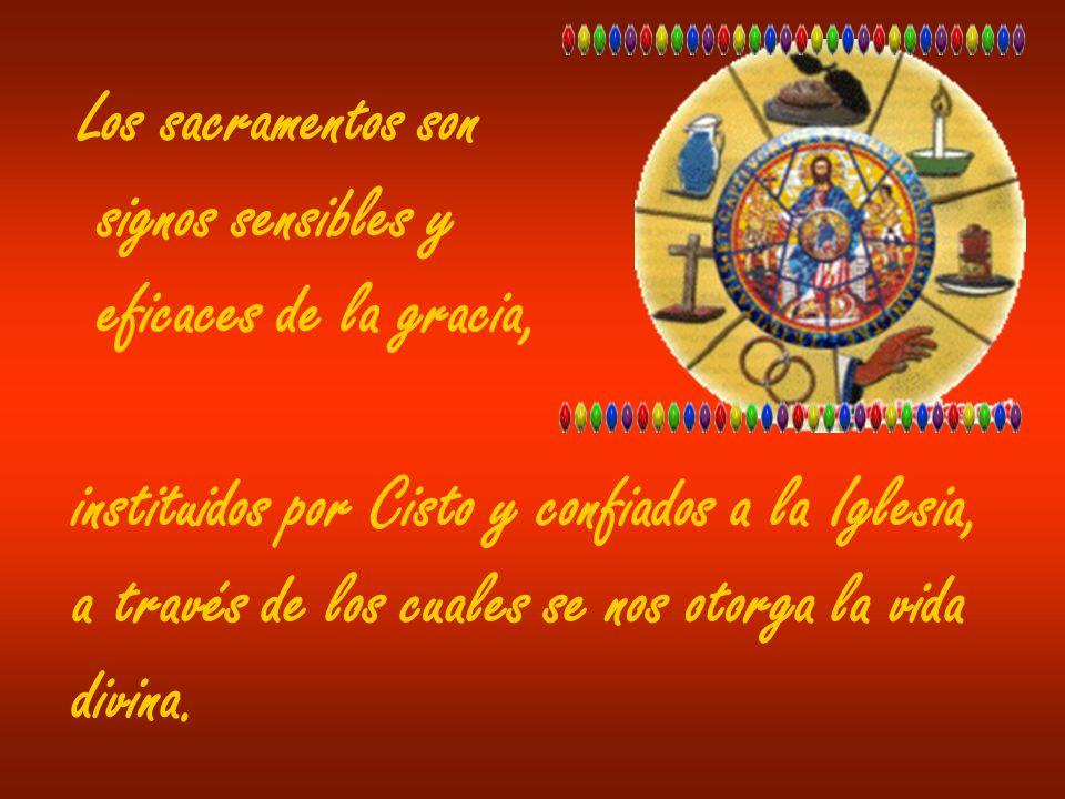 Los sacramentos sonsignos sensibles y. eficaces de la gracia, instituidos por Cisto y confiados a la Iglesia,