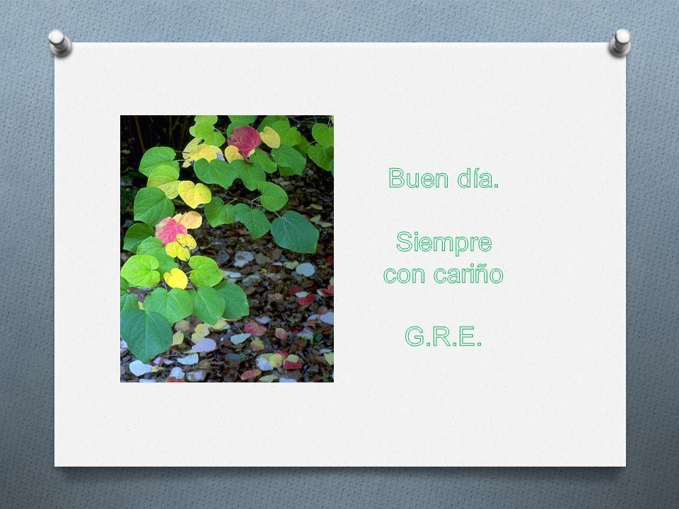 Buen día. Siempre con cariño G.R.E.