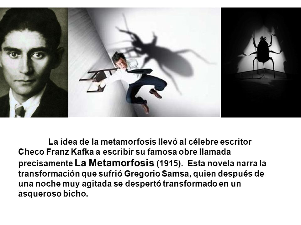 La idea de la metamorfosis llevó al célebre escritor Checo Franz Kafka a escribir su famosa obre llamada precisamente La Metamorfosis (1915).