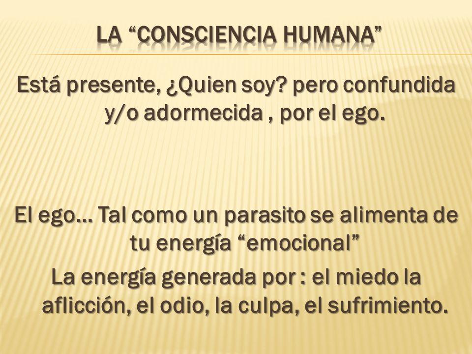 La Consciencia Humana