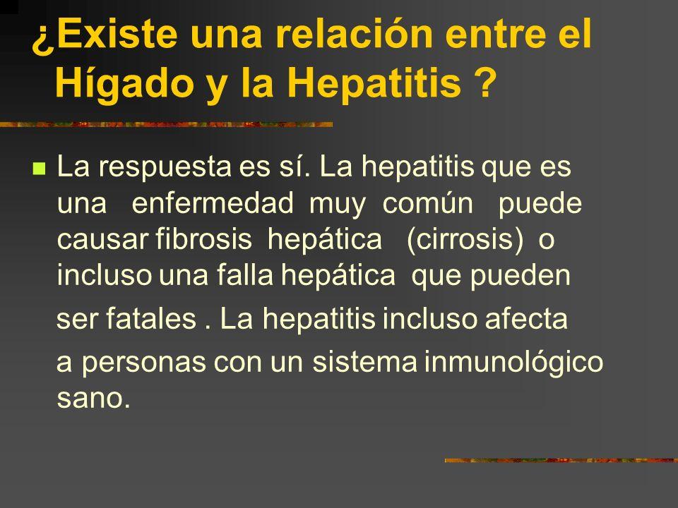 ¿Existe una relación entre el Hígado y la Hepatitis