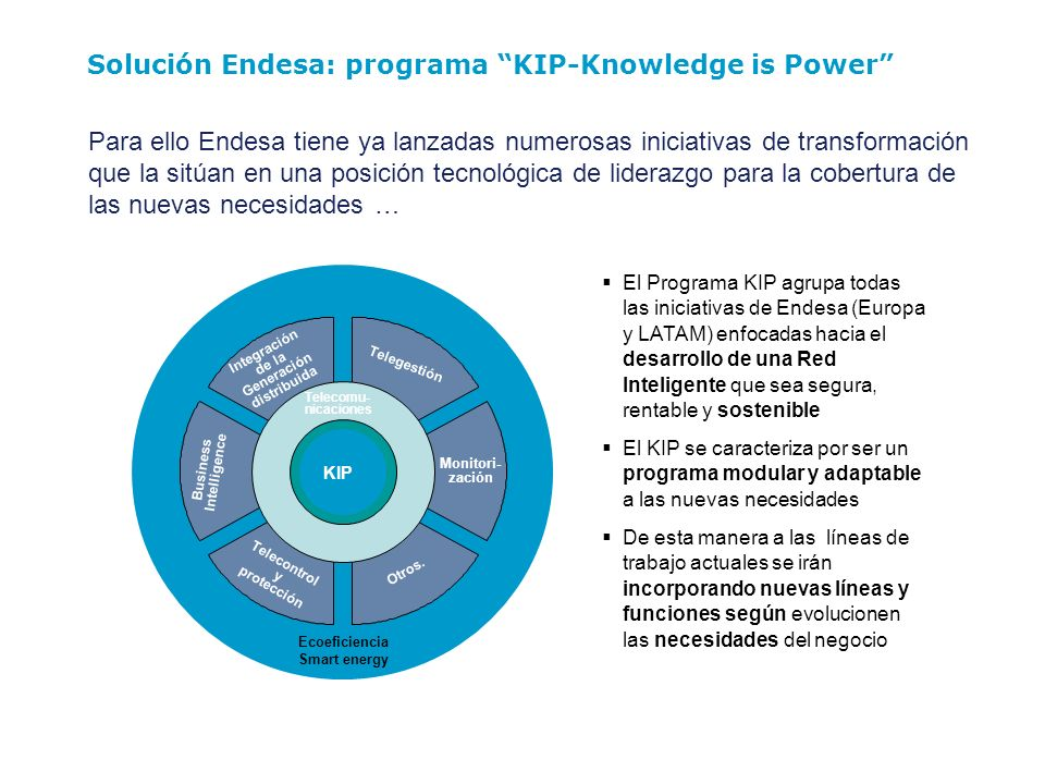 Solución Endesa: programa KIP-Knowledge is Power