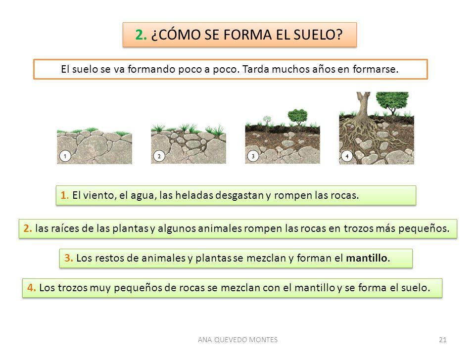 Los minerales las rocas y el suelo ppt descargar for Como se forma y desarrolla el suelo