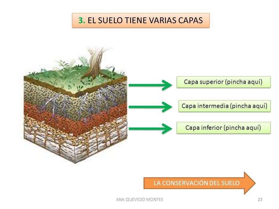 Los minerales las rocas y el suelo ppt descargar for El suelo y sus capas