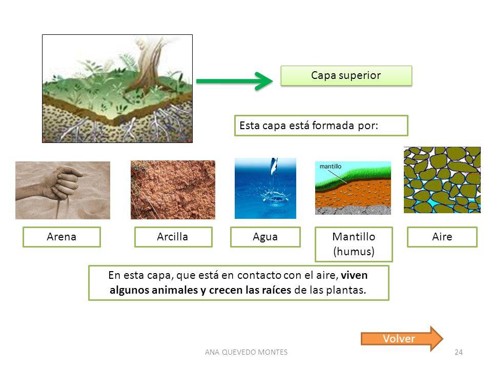 Los minerales las rocas y el suelo ppt descargar for Como estan formados los suelos