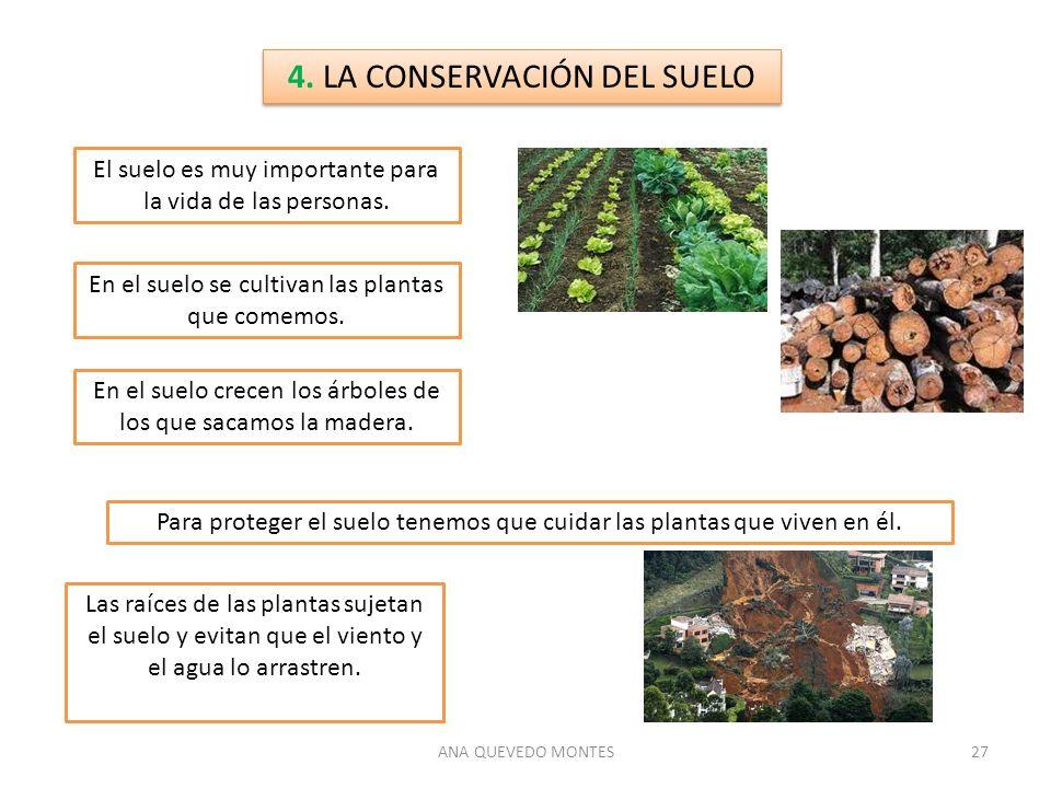 4. LA CONSERVACIÓN DEL SUELO