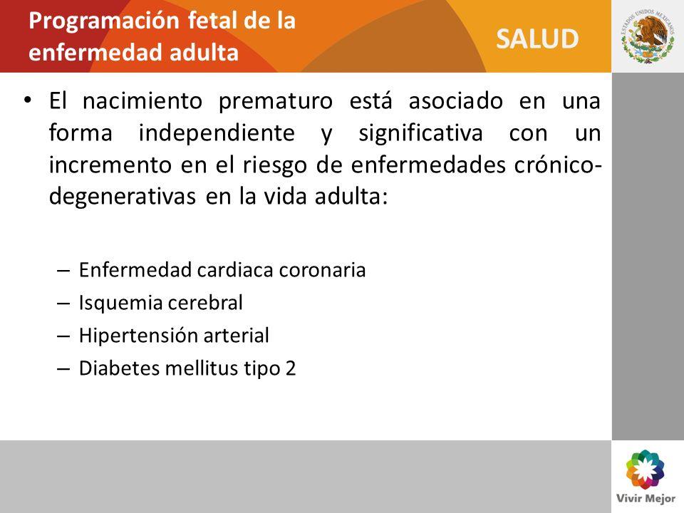 Programación fetal de la enfermedad adulta