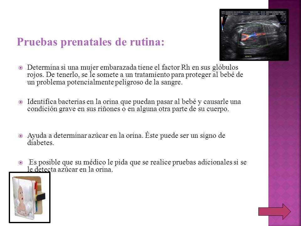 Pruebas prenatales de rutina: