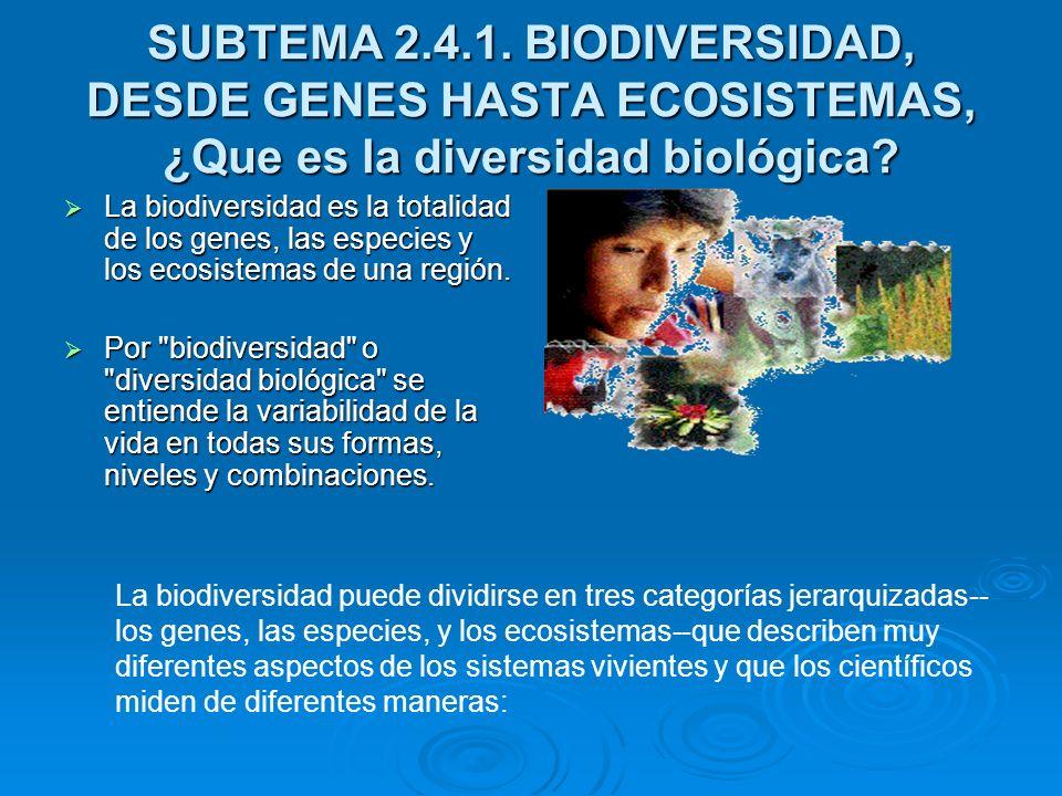 SUBTEMA 2.4.1. BIODIVERSIDAD, DESDE GENES HASTA ECOSISTEMAS, ¿Que es la diversidad biológica