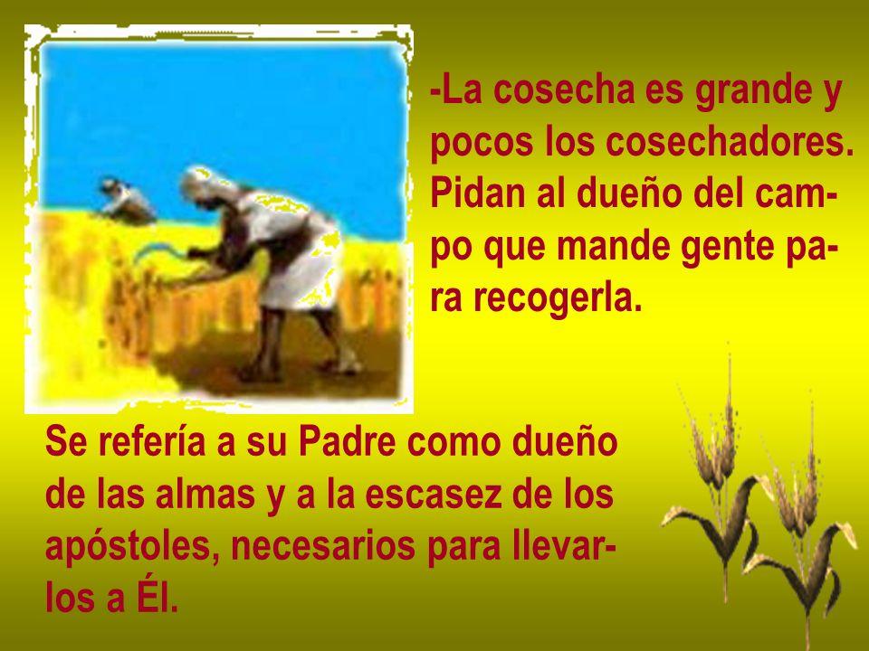 -La cosecha es grande y pocos los cosechadores. Pidan al dueño del cam- po que mande gente pa- ra recogerla.