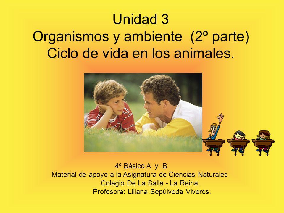 Organismos y ambiente (2º parte) Ciclo de vida en los animales.