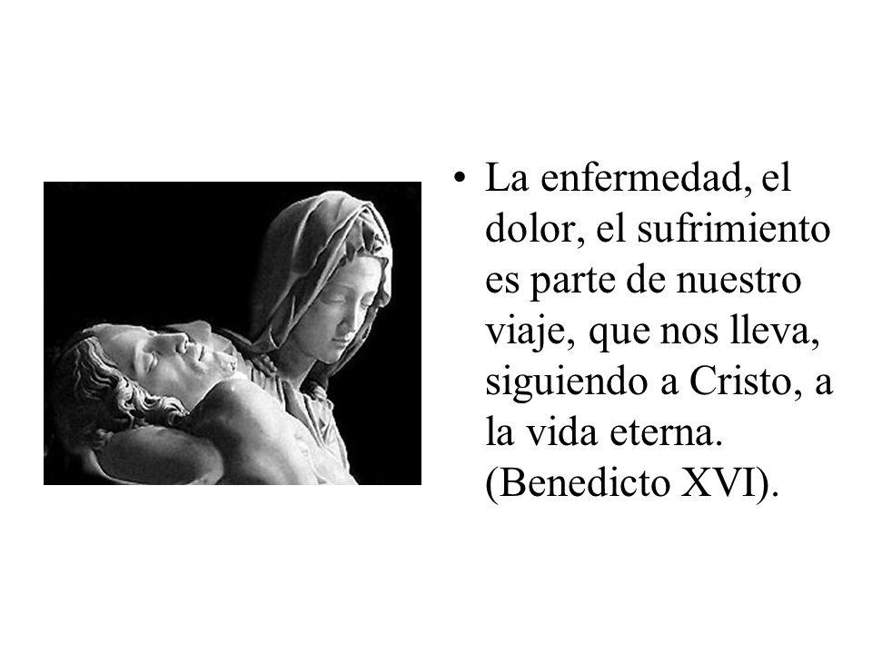 La enfermedad, el dolor, el sufrimiento es parte de nuestro viaje, que nos lleva, siguiendo a Cristo, a la vida eterna.