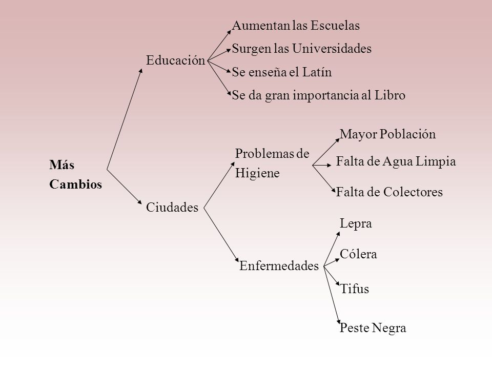 Aumentan las Escuelas Surgen las Universidades. Educación. Se enseña el Latín. Se da gran importancia al Libro.