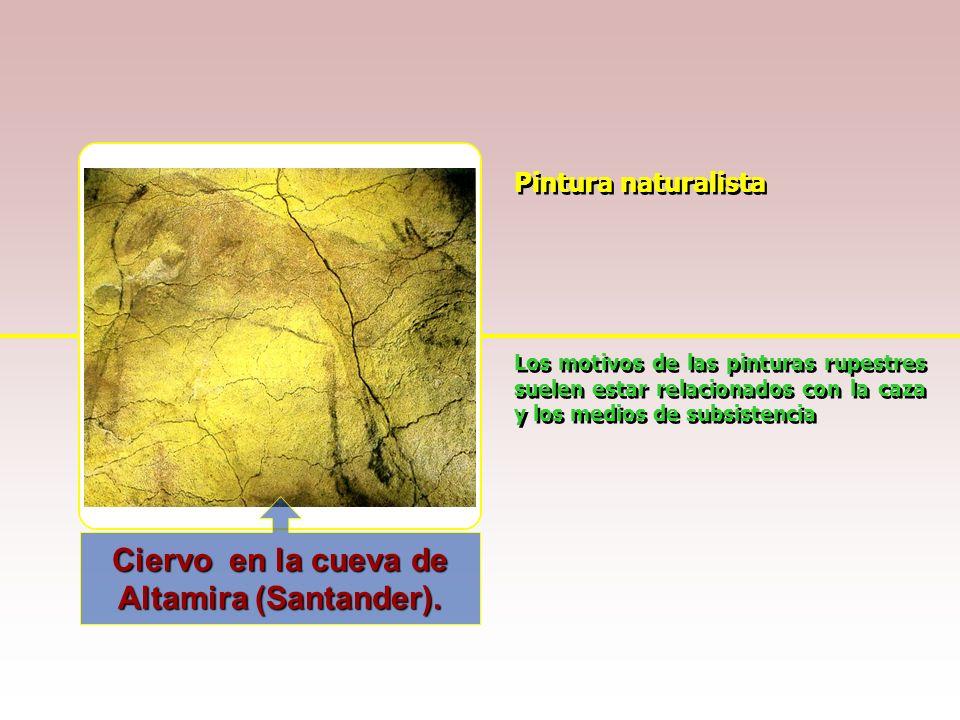 Ciervo en la cueva de Altamira (Santander).