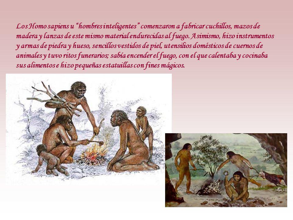 Los Homo sapiens u hombres inteligentes comenzaron a fabricar cuchillos, mazos de madera y lanzas de este mismo material endurecidas al fuego.