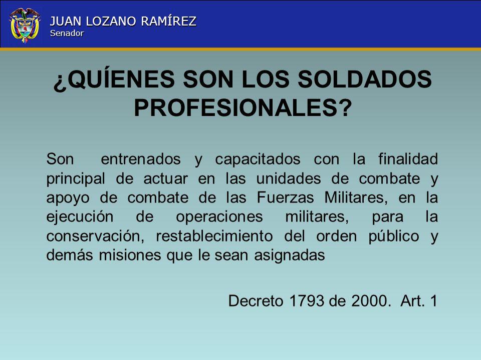 ¿QUÍENES SON LOS SOLDADOS PROFESIONALES