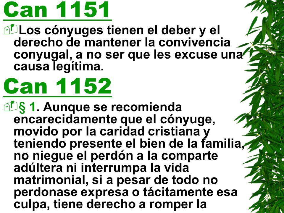 Can 1151 Los cónyuges tienen el deber y el derecho de mantener la convivencia conyugal, a no ser que les excuse una causa legítima.