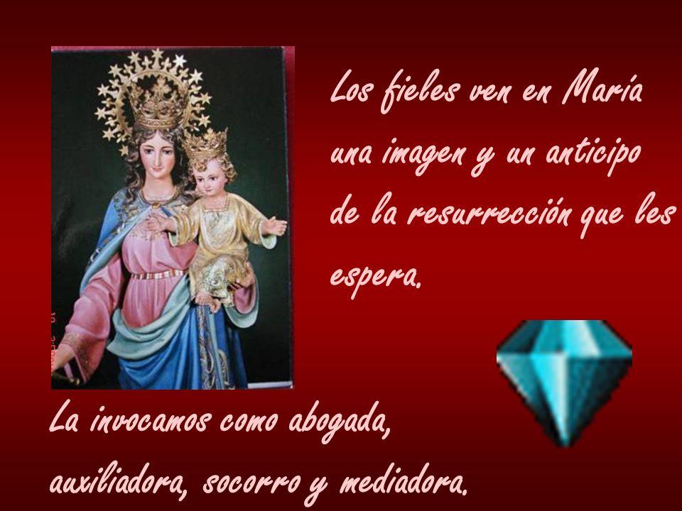Los fieles ven en María una imagen y un anticipo. de la resurrección que les. espera. La invocamos como abogada,