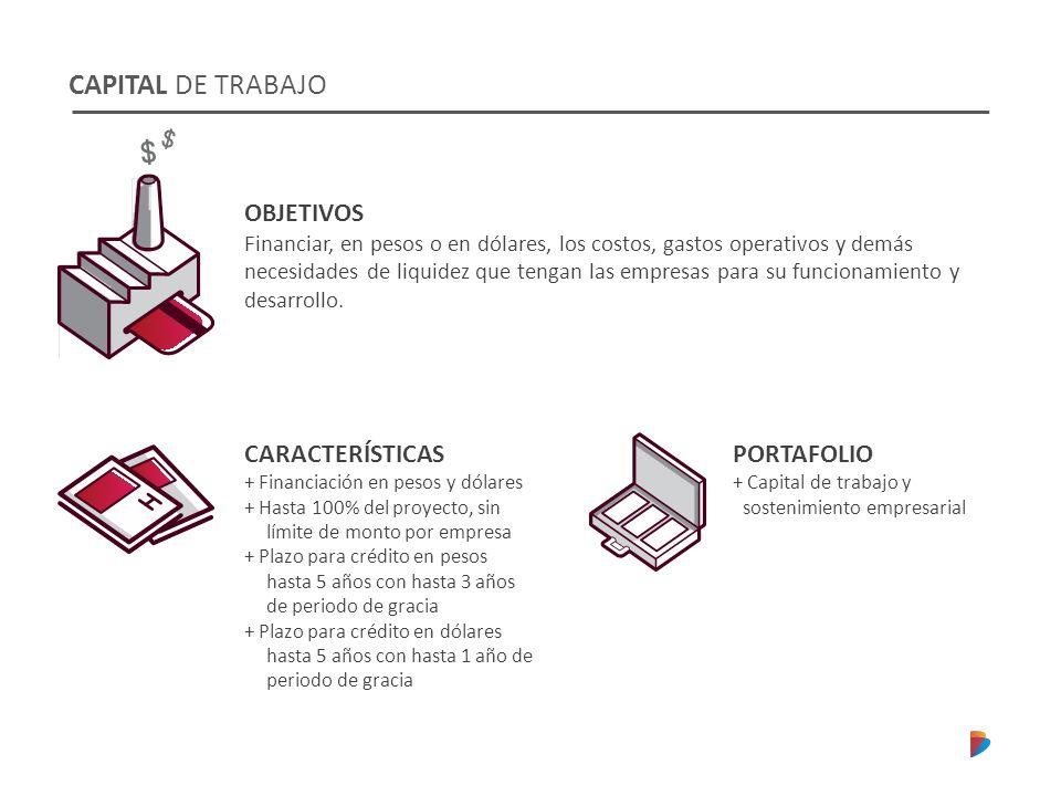 CAPITAL DE TRABAJO OBJETIVOS CARACTERÍSTICAS PORTAFOLIO