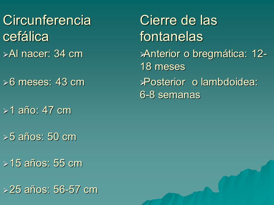 Circunferencia cefálica Cierre de las fontanelas