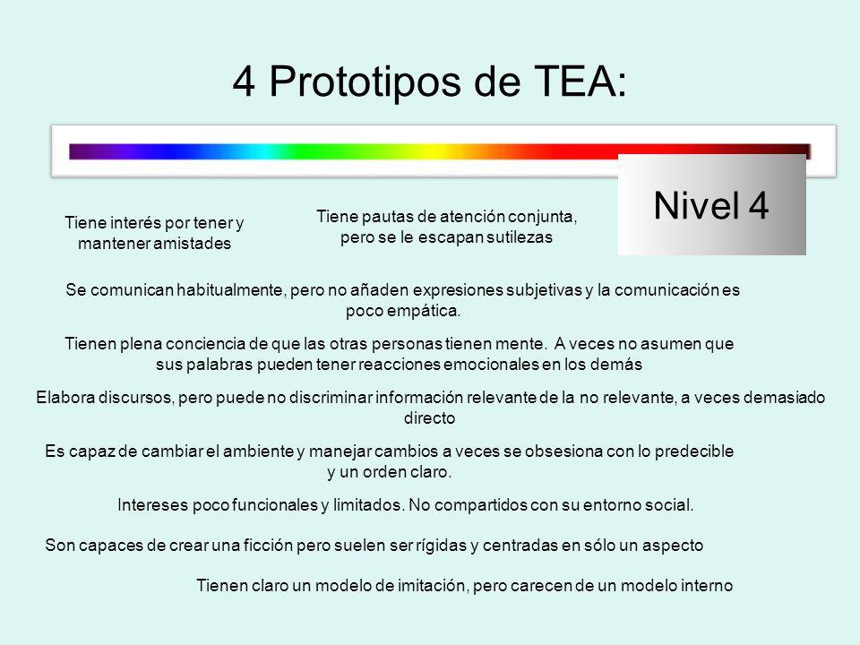 4 Prototipos de TEA: Nivel 4