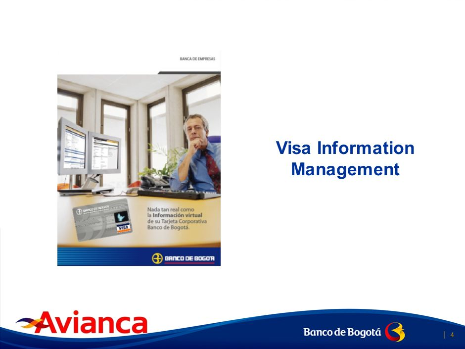 Visa Information Management