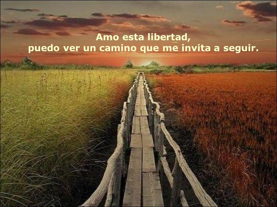 Amo esta libertad, puedo ver un camino que me invita a seguir.
