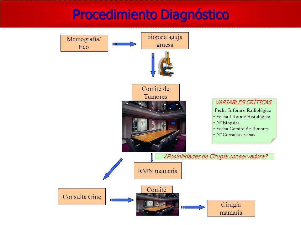 Procedimiento Diagnóstico